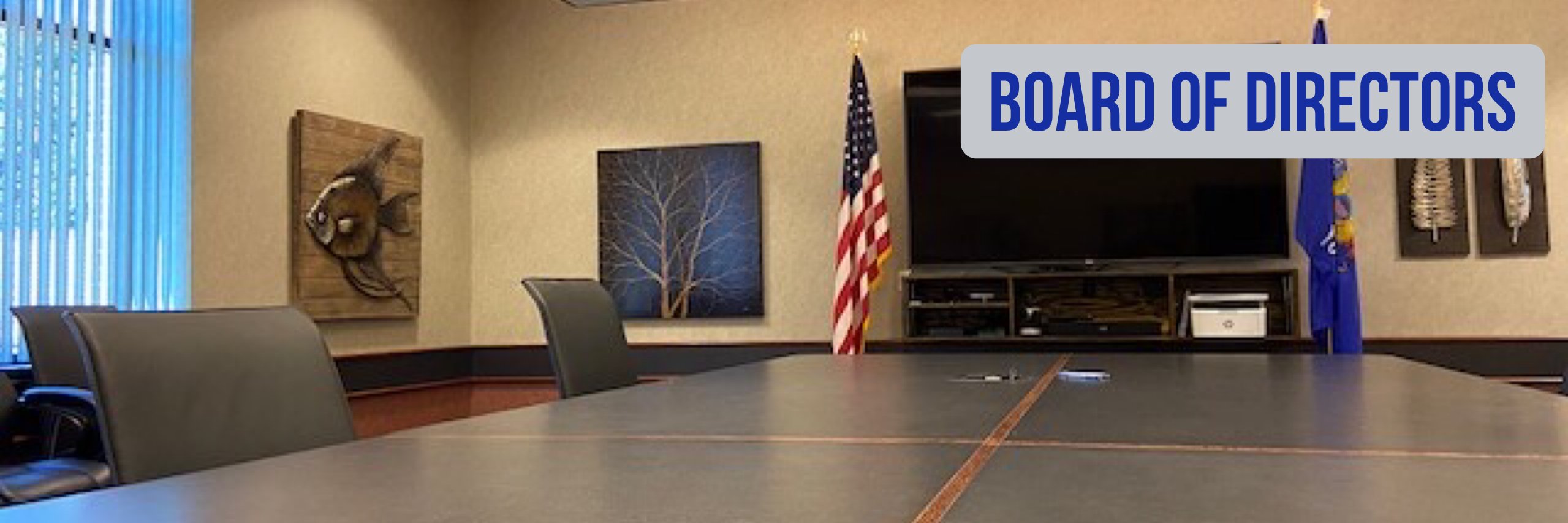 Board Banner Photo.PNG